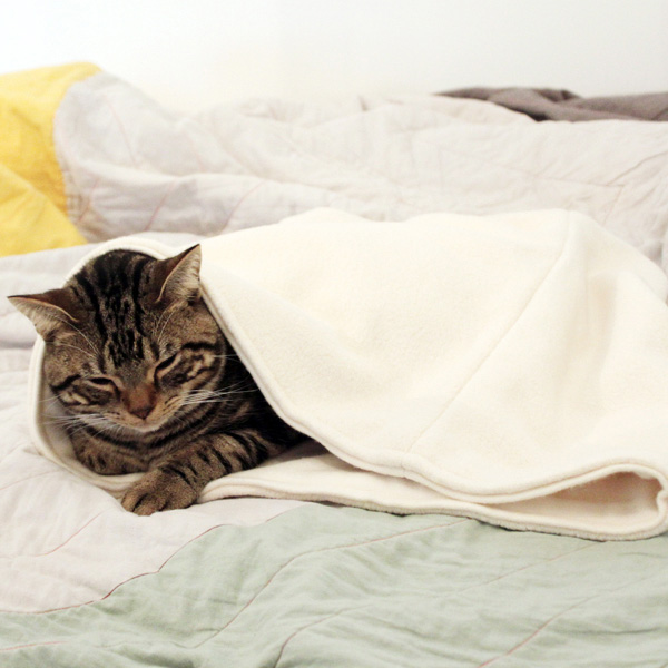 猫の寝袋毛布 スリーピングバッグ