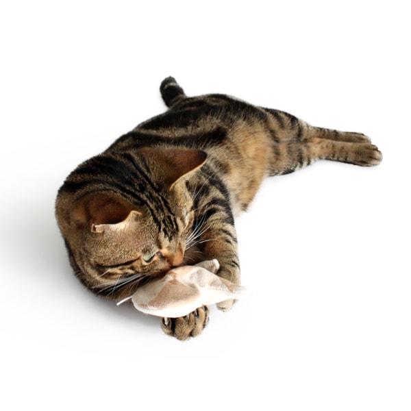猫おもちゃ ミトン