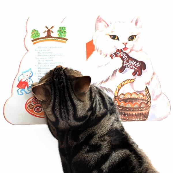 猫 絵本 ロシア むたろう