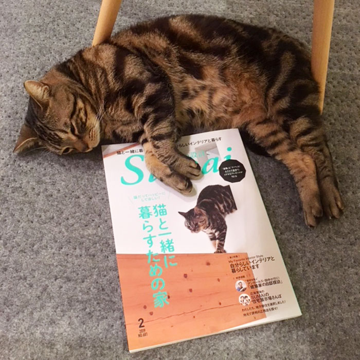 SUMAI no SEKKEI(住まいの設計)2月号