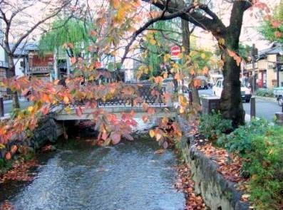 高瀬川の紅葉