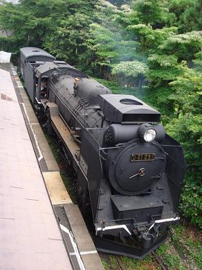 D51-561