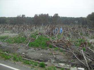 防災林植林ツアー