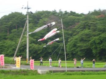2012-07-29-E-56.JPG