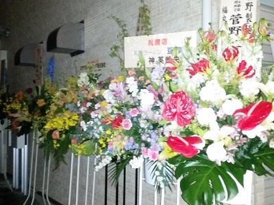 2017-04-12-fm-4.jpg