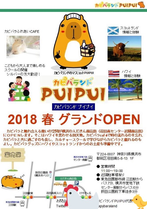 2017-10-13-pui-1.jpg