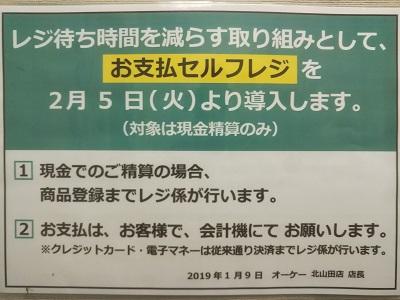 2019-02-05-ok-3.jpg
