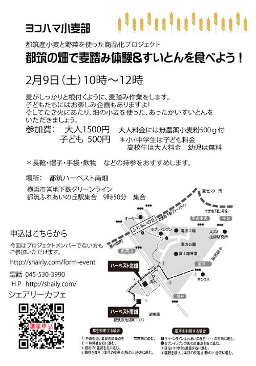 20190209-500-yk-.png