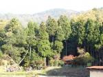 鶏足寺参道