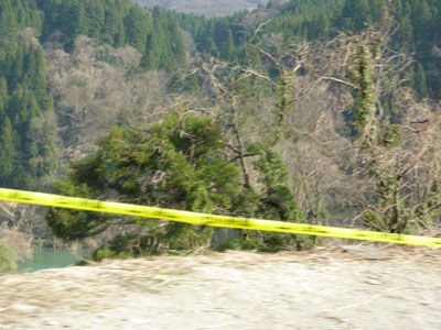 頭部のない女性の遺体が見つかった事件