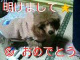 20070107_187363.JPG