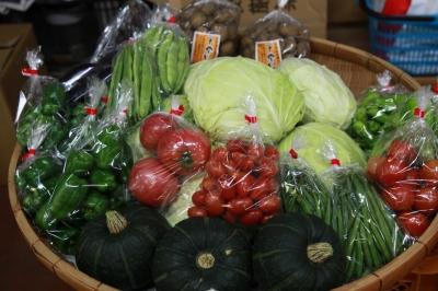 上村の夏秋野菜