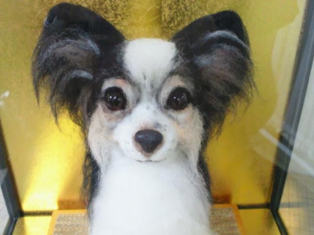 羊毛フェルト犬パピヨン