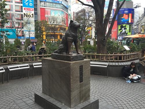 20160313_26.jpg