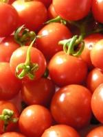 大芝島で採れたミニトマト