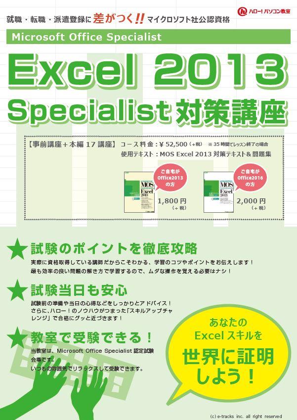 Excel2013specialist
