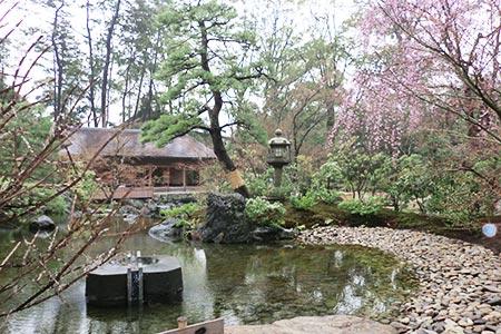 寒川神社 神苑の様子