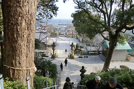 走水神社から見下ろす景色
