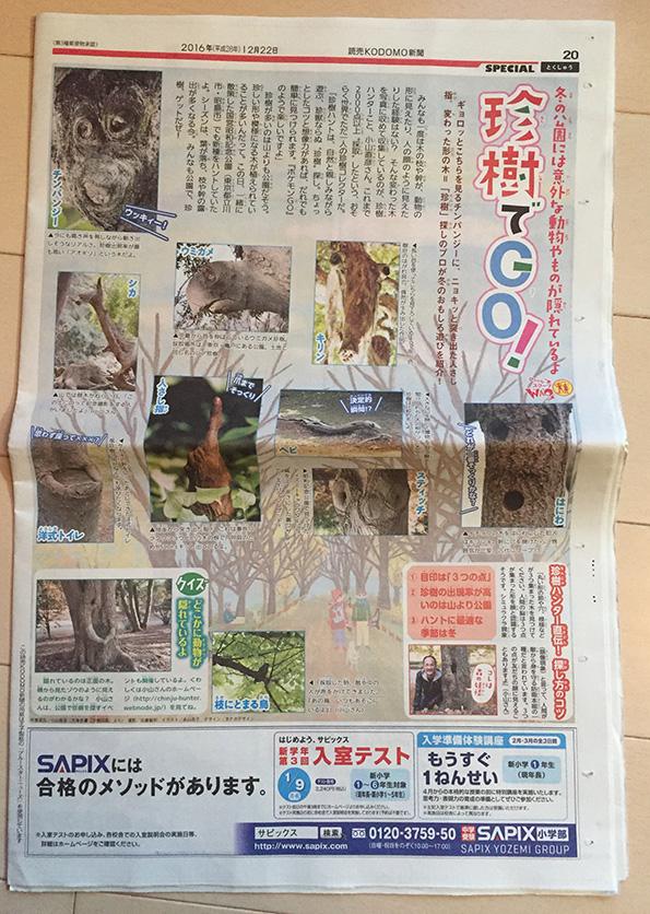 「読売KODOMO新聞」12月22日第302号イラスト,子供イラスト,教育イラスト,風景イラスト,公園イラスト