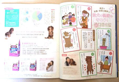 ベネッセ発刊「いぬの気持ち」2017年2月号コラムイラスト,犬イラスト,女性イラスト