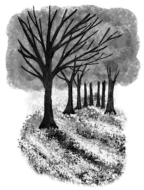 オリジナルイラスト「落ち葉と公園2」 モノクロイラスト,風景イラスト,景色イラスト,公園イラスト