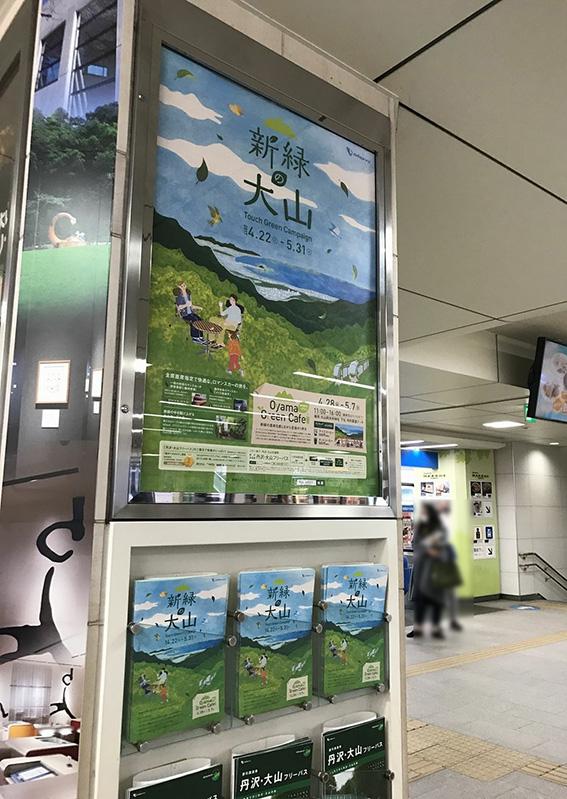小田急電鉄「新緑の大山Touch Green Campaign」ポスターイラスト,パンフレットイラスト,WEBサイトイラスト,新緑イラスト,カフェイラスト,家族イラスト,風景イラスト
