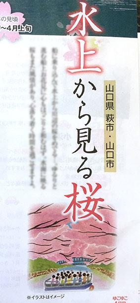 温泉情報誌「ゆこゆこ」4.5月号 桜イラスト,お花見イラスト,風景イラスト,景色イラスト,春イラスト