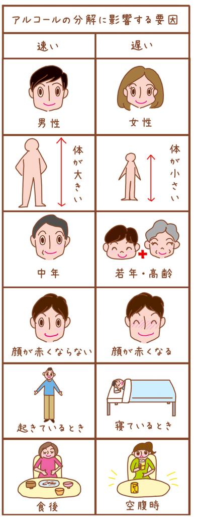 東京都福祉保健局WEBとうきょう健康ステーション「オトナの飲み方」コラムイラスト,健康イラスト,飲酒イラスト