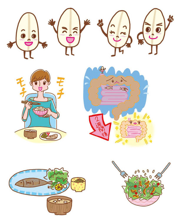 KADOKAWA発刊 雑誌「レタスクラブ 2月号」第2付録冊子「もち麦」ダイエット挿絵 ダイエットイラスト,美容イラスト,健康イラスト