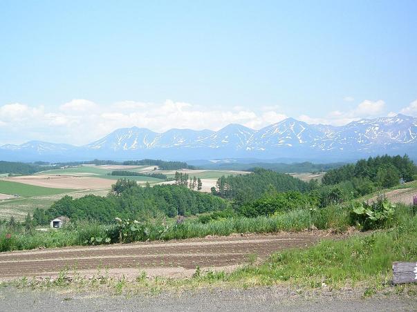 美瑛の丘2