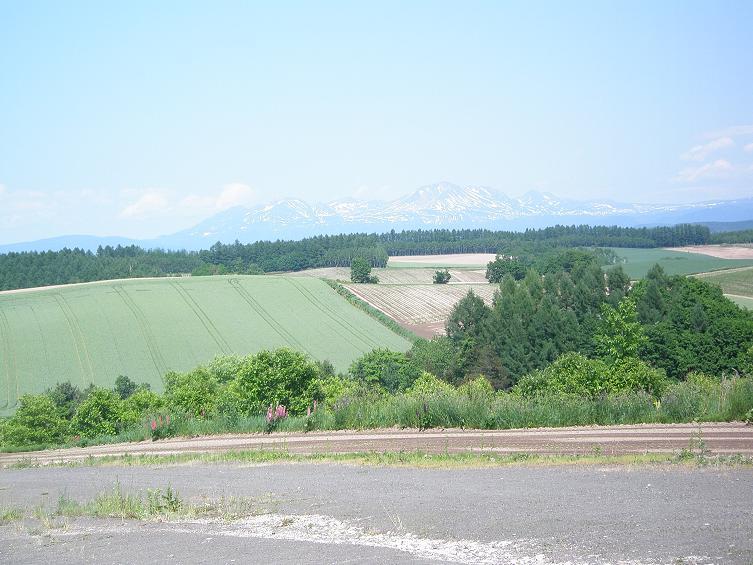 美瑛の丘3