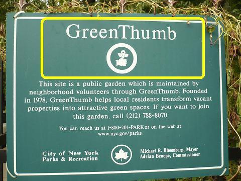 greenthumb3.JPG
