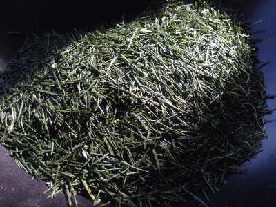 2017年 手摘み新茶