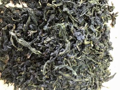 文山包種茶3