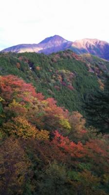 奥大井の秋