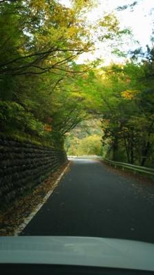 奥大井の秋2