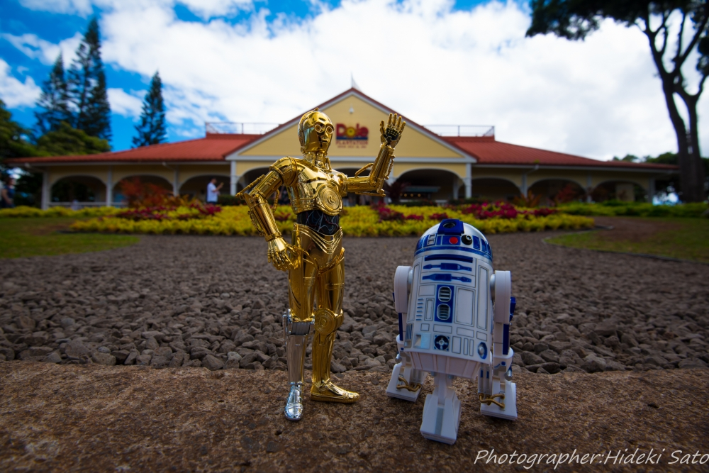 STARWARS,DOLE,Hawaii