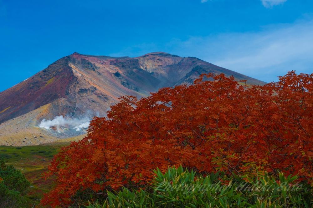 大雪山,旭岳,北海道