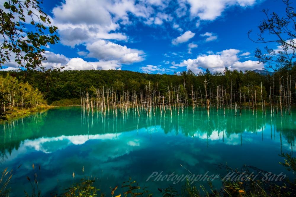 青い池,北海道