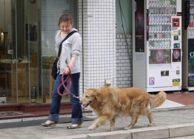 ミミとお散歩中♪