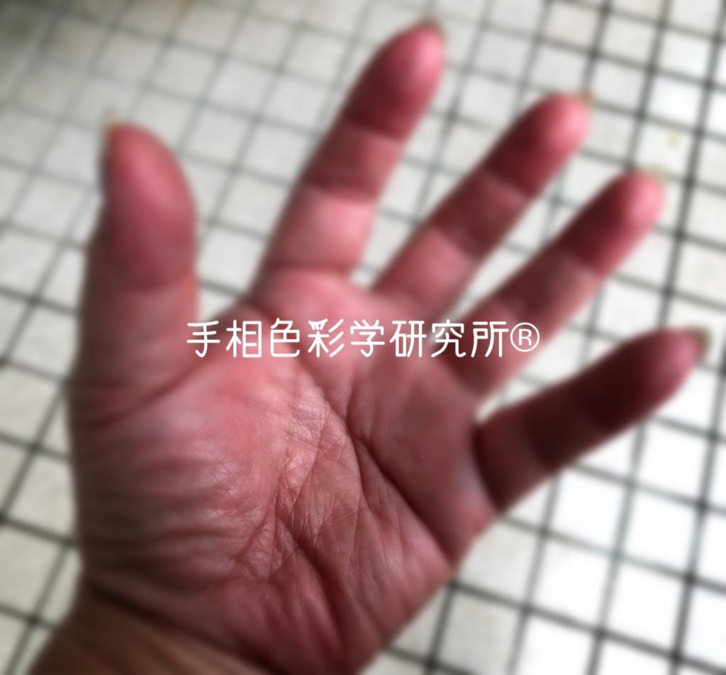 ファティマの手(目)手相色彩学研究所®k