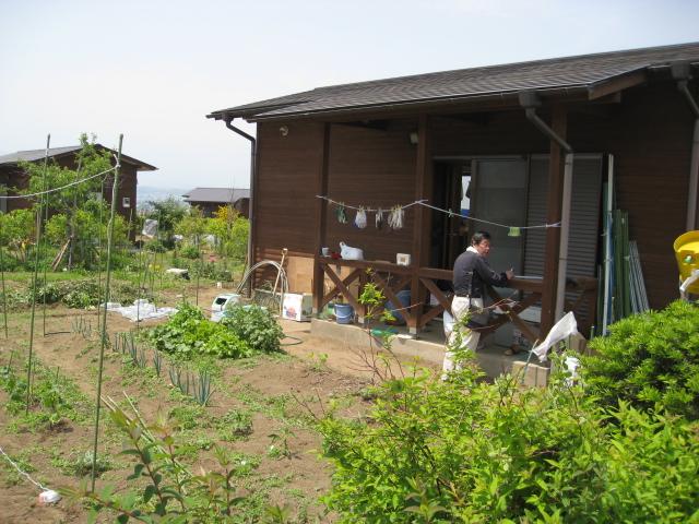 農園仲間の小屋付きの畑