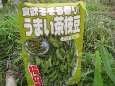 うまい茶枝豆