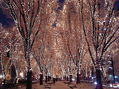 光のページェント雪景色・定禅寺通り