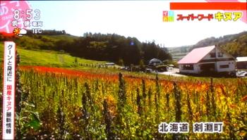 北海道剣淵町