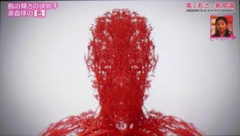 redbloodcell121.jpg