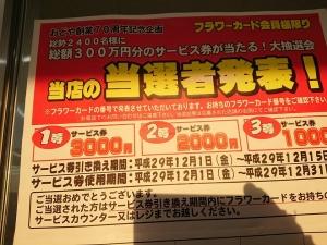 8 - コピー - コピー.jpg