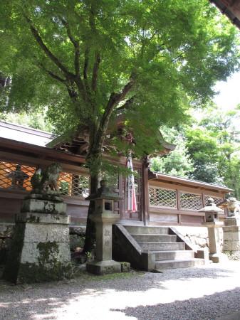 藤尾神社2.JPG