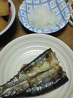 秋刀魚。ちょっと写真が悪い。。。