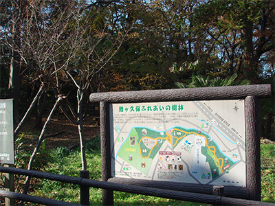 鯉ヶ久保ふれあいの樹林
